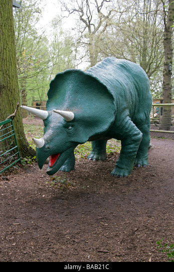 Life Size Model Triceratops Dinosaur